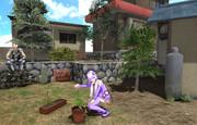 庭の植木セット