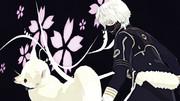 無口と饒舌な桜人