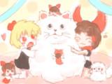 冬毛MUR猫