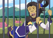 チンパンジーのことアクア様って言うのやめろよ!