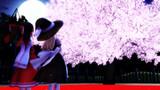 【MMD花見選手権】夜桜