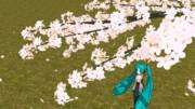 咲いて散るサクラ(今更散っても手遅れだコレ)再現セット