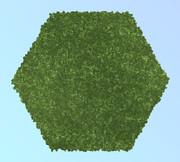 六角形の海苔