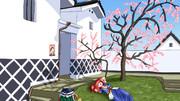 梅の花の下で昼寝