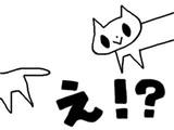 色んな猫008