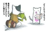 オトモエラー猫