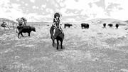 牛に乗った時雨