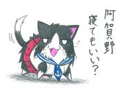 阿賀野ネコ