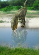 水を飲むティラノサウルス