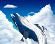 空飛ぶなにかのクジラ