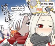 【FGO】エミヤとアイリの協力プレイ