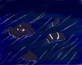 海を漂う敗者