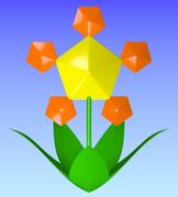 五角形の花