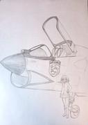 F-8クルセイダーとローズヒップ
