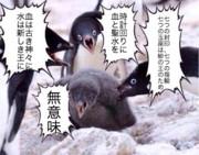 ペンギンコラでSCP(2317ネタバレ)