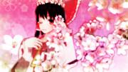 【幻想花祭】舞桜