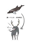 四足歩行型イルカ