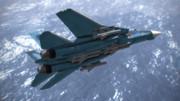 F-14支援戦闘機
