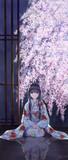 桜 (Cherry tree)