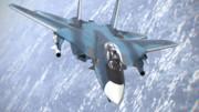 F-14支援戦闘機その2