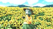 【幻想花祭】向日葵の咲く頃に