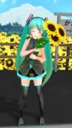 「向日葵」