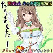 bitcash2016 グランプリおめでとうございます