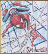 今日の色紙#15「スパイダーマン」