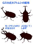 【MMD】Gスカ式カブトムシ
