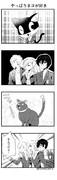 やっぱりネコが好き