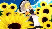 向日葵の園を駆け抜ける魔理沙さん