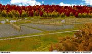 田畑のある山間の秋