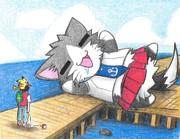 道をふさぐ阿賀野ネコ