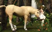 馬も興味深々