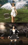 無慈悲な天使と傲慢な悪魔
