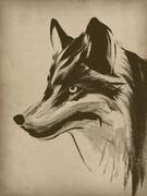 zenbrush練習模写。狼。