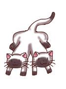 なんか意味の違うシャム猫