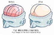 図1.競女を摂取した脳の変化