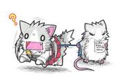ネズミ提督と瑞鶴子ネコ