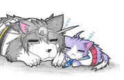 酒匂ネコと長門犬