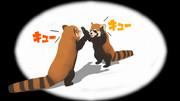 荒ぶるレッサーパンダ