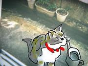 ネコの子どもの時の写真に色をつけた!