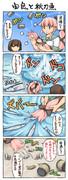 由良と秋刀魚
