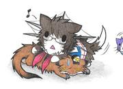 マングース提督と鳥海ネコ