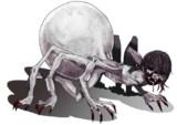 【素材利用可】人蜘蛛/女