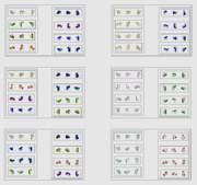 立体の24種類の見方 〈改〉 〈改〉 Β