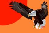 鷹(模写)