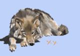 オオカミ(模写)