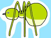メジロ蜘蛛