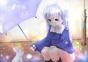 チノとうさぎ【4/118】